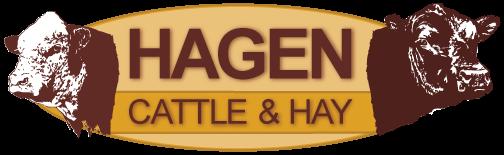 Hagen Cattle and Hay